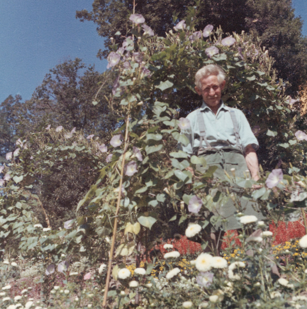 Friedrich in his garden